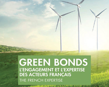Green Bonds, obligations environnementales