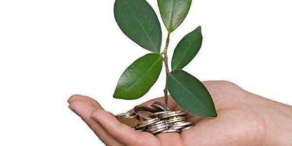 La finance verte, l'économie de demain
